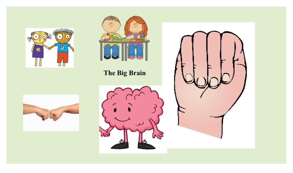 Big Brain, Little Brain – Teaching Kids About the Brain and